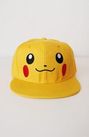 Pikachu pet Pokemon