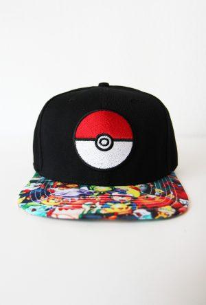 Pokemon-pet-pokeball