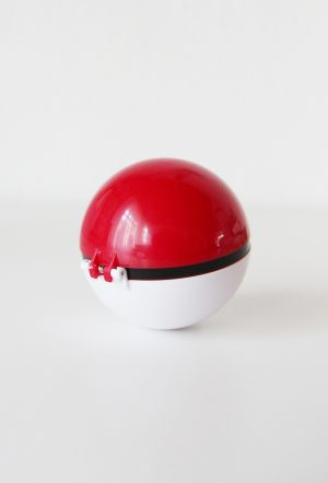 Pokemon-pokeball-kopen